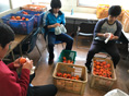 神奈川ワークショップから「柿の収穫」の報告です。