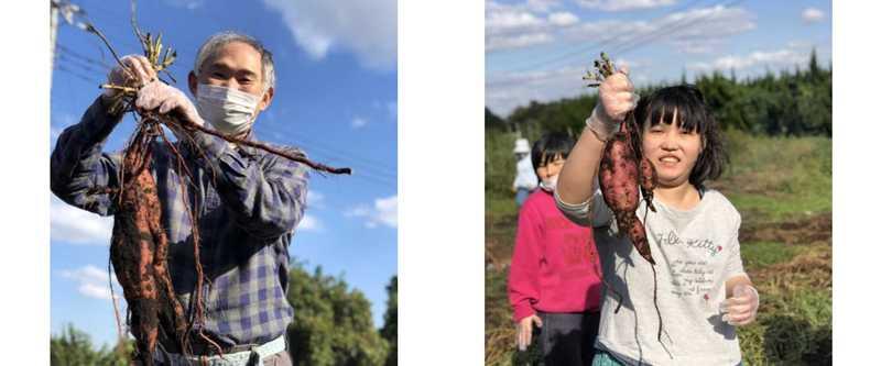 「芋掘り」の記事が掲載